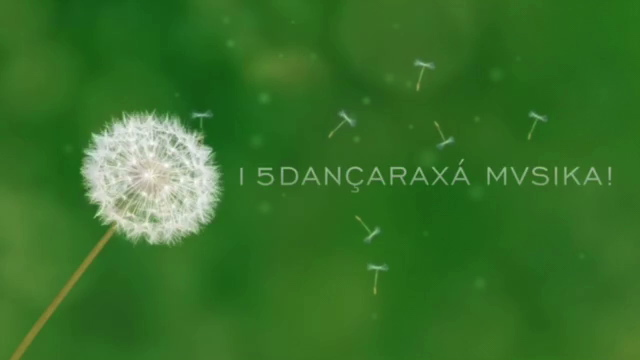 dancaraxa2015-11371010-1224814.jpeg